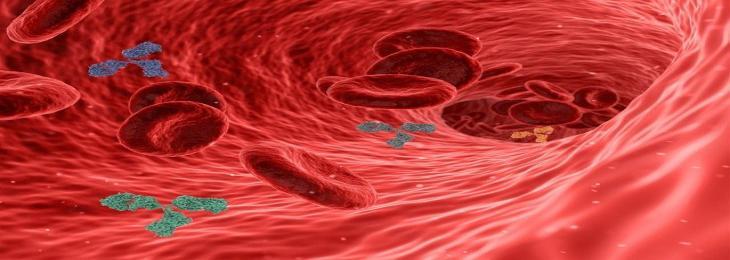 Antibodies that Block TREM2 Eliminate Cancer
