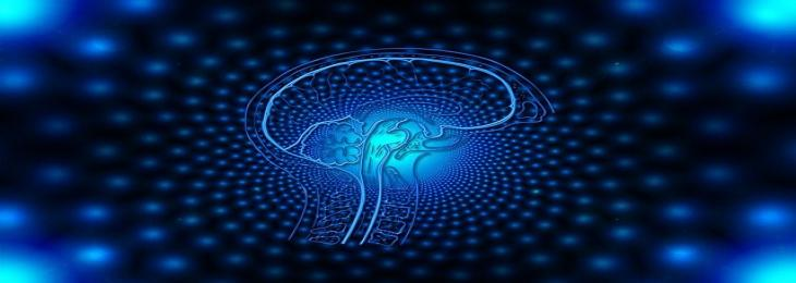 Researchers have discovered a spirituality-related Brain Circuit