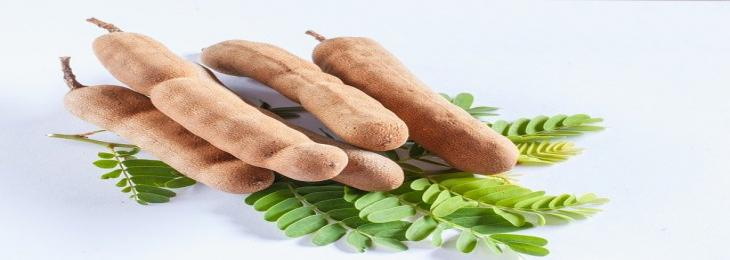Scientists Innovated Energy Storing Material from Tamarind Waste